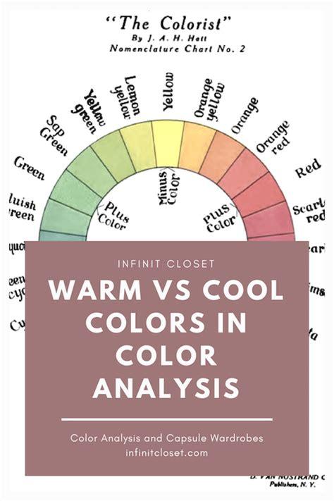 cool colors vs warm colors warm vs cool colors in seasonal color analysis infinite
