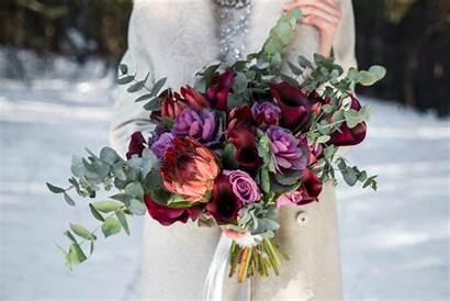Winter Bouquet Flowers Stunning Purple Dark