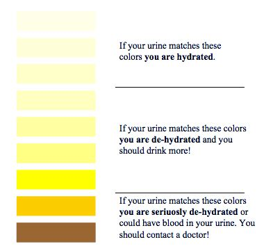 Coloring Urine by Urine Color Chart Martin S Rugbycoach