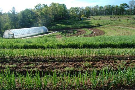 chicken coop ideas starting a farm beginning farmers