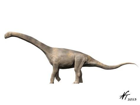 turiasaurus pictures facts dinosaur