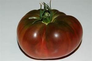 Tomate Noir De Crimée : tomate noire de crim e collectif d 39 urgence ~ Dailycaller-alerts.com Idées de Décoration