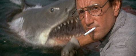 jaws  review film summary  roger ebert