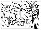 Forest Coloring Pages Animals Background Sheets Printable Drawing Habitat Woodland Animal Sheet Forests Colour Template Bestcoloringpagesforkids Google Sabbath Getcoloringpages Getdrawings sketch template