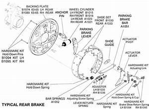 Typical Rear Brake - Diagram View
