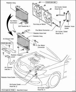 2002 Toyota Corolla Engine Diagram