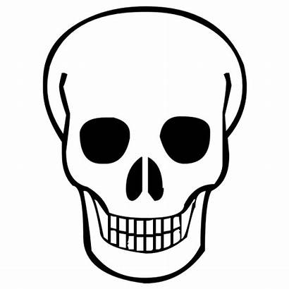 Clipart Skulls Skull Clipground