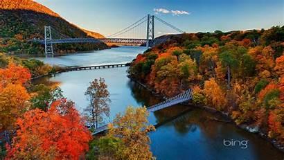 Bing Bridge Fall Jungle River October Wallpapers