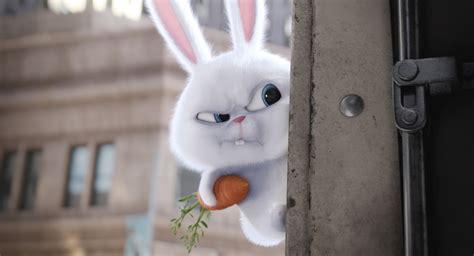 wallpaper  secret life  pets rabbit  animation