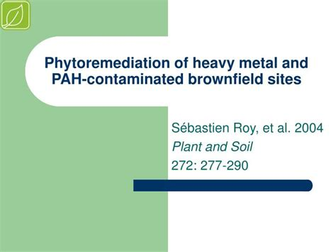 phytoremediation  heavy metal  pah contaminated