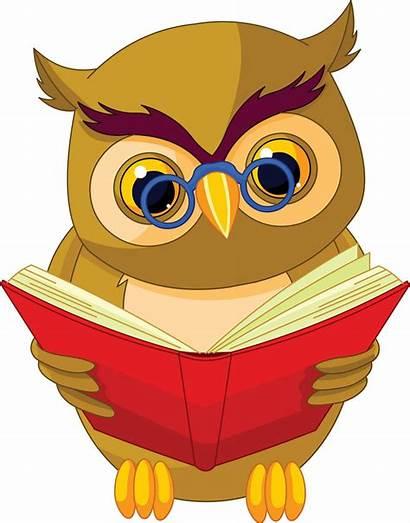 Grammar English Tenses Present Perfect Owl Pill