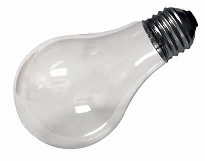 Bulb Lightbulb Transparent Background Flashlight Surreal Vector
