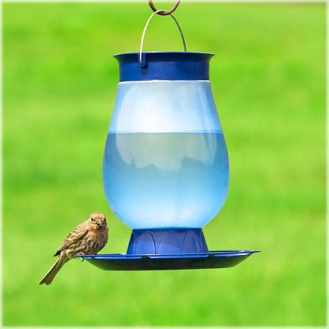 bird water feeder top fill bird water feeder pet 174 bird feeders