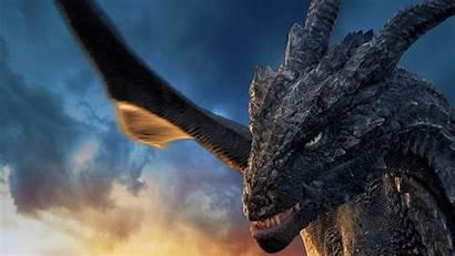 Dragonheart Curse Sorcerer Film Fluch Druiden Wallpapers
