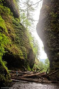 Oneonta Gorge Lower Falls Hike Oregon