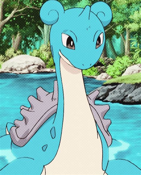 lapras pokemon kanto pokegraphic kalos pokeani stuff shelgon