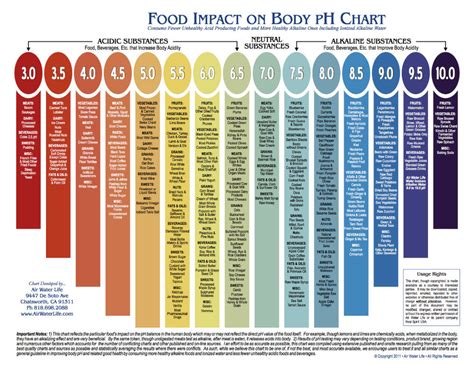 top  ways  support ph balance alkaline foods list