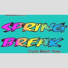 Crystal Beach Disc Dog Event