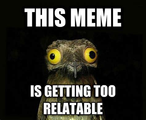 Potoo Meme - weird bird meme