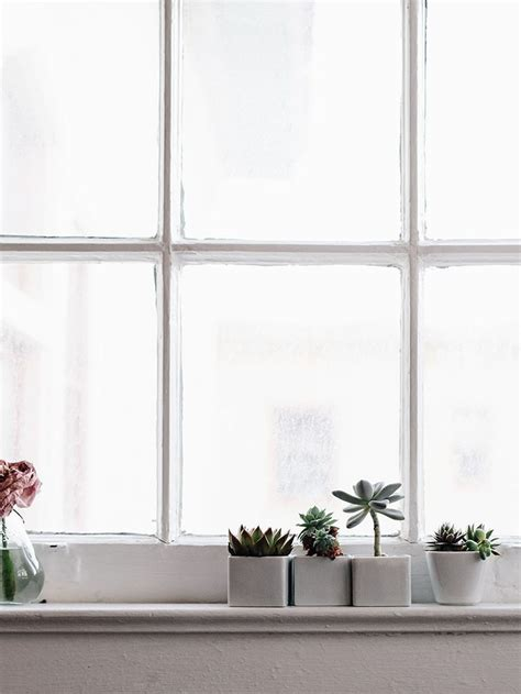 Window Ledge For Plants by 25 Best Ideas About Kitchen Window Sill On