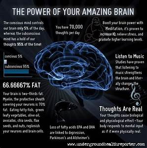 7 Awe-Inspiring Facts About Your Brain (infographic ...