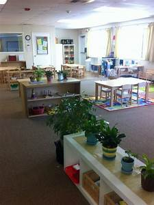 Montessori Classrooms are different but with similarities ...
