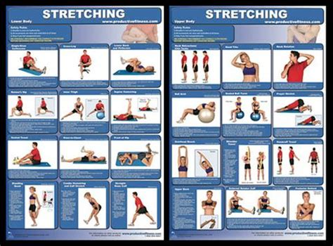 Browse through the items below to view our full range of charts in this category. Exercise Stretching Professional Fitness Instructional Wall Charts (2) Posters - PFP - Sports ...
