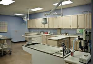 animal hospital carpenter animal hospital bobbitt design build