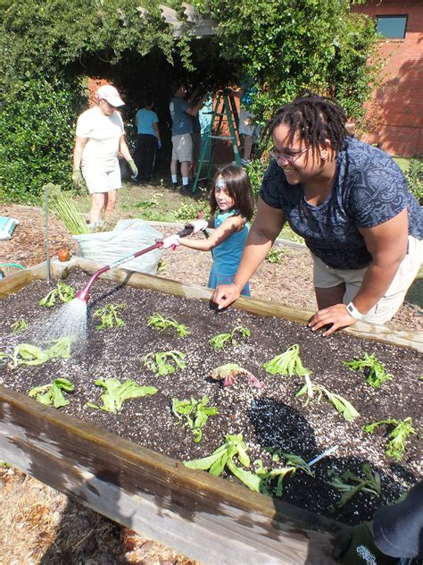 whole foods garden city whole foods helps winter park garden grow port city daily
