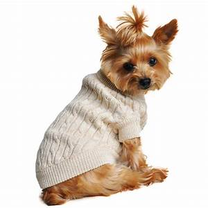 Cable Knit Dog Sweater by Doggie Design - Oat... | BaxterBoo