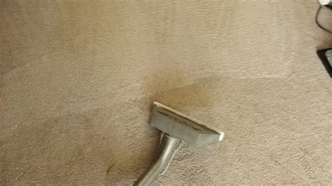 Carpet Repair Escondido Stair Repair And Carpet Cleaning Memorable Red Carpet Looks Bond Cleaners Gold Coast Golden Globes Tv Schedule We Clean Carpets Dallas Reviews Professional Cleaning Machine Uk Cost Of Pad At Lowes Simply Seamless Tiles Heaven S Best Vancouver Wa