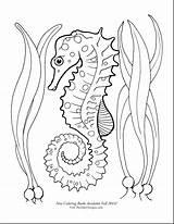 Seahorse Coloring Horse Seahorses Drawing Sea Printable Draw Google Adult Getdrawings Tattoo Ocean Fish sketch template