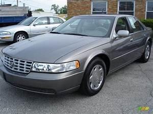 1999 Moonstone Cadillac Seville Sls  30036727