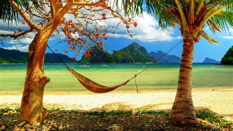 Hammock Day by Untitled Happy Hammock Day 2014 Hd Images Pictures