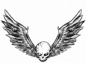 Drawn wings skull wing - Pencil and in color drawn wings ...