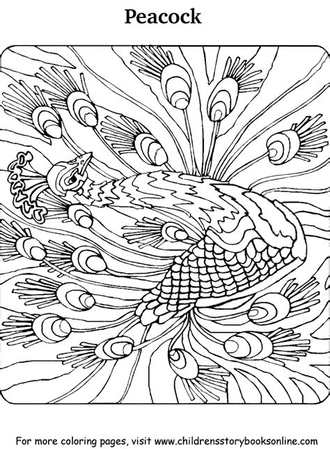 peacocks coloring pages   print