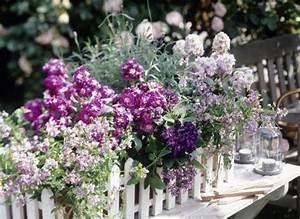Blumenkästen Bepflanzen Sonnig : balkonk sten ideen f r alle jahreszeiten zum nachpflanzen living at home ~ Orissabook.com Haus und Dekorationen