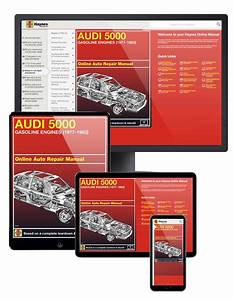 Audi 5000 With Gas Engines  77