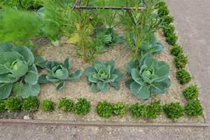 Paillage Jardin Vente En Ligne De Paillage Naturel Pour