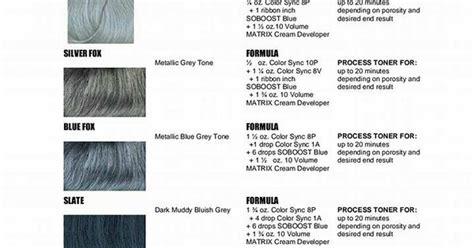 Silver Hair Formulas Using Matrix @elizabethjoannehair
