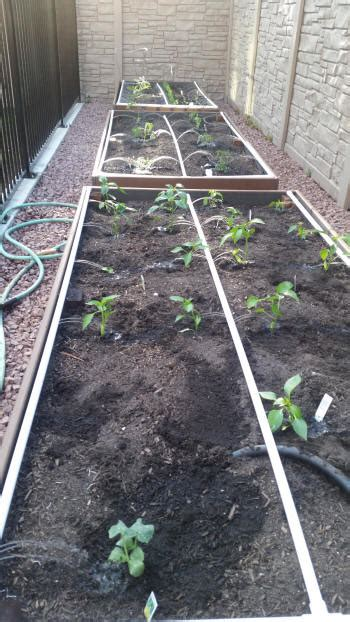 I made raised beds out of composite deck boards. Build Trex Raised Bed Garden