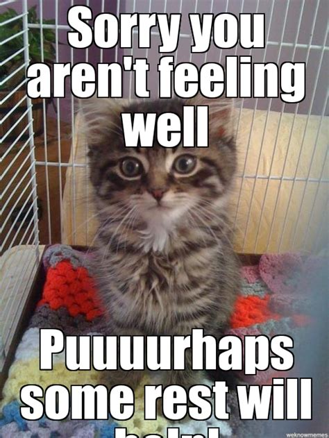 Funny Get Well Meme - get well soon funny memes bing images