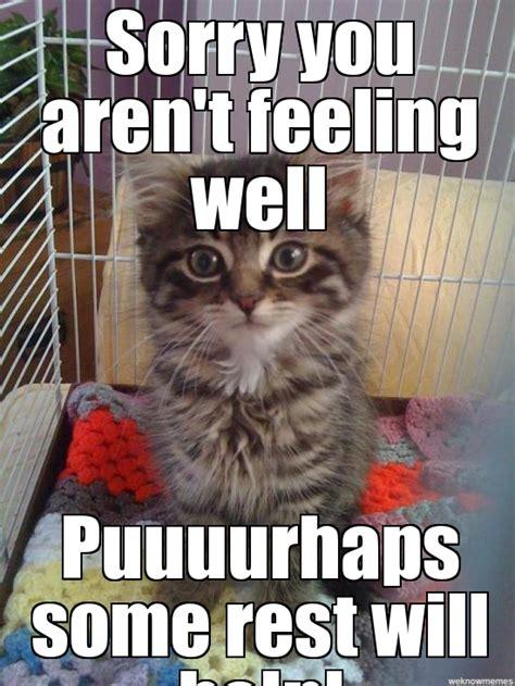 Get Well Meme - 20 cutest memes for your sick friend sayingimages com