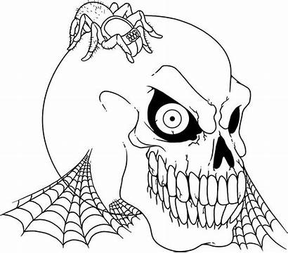 Scary Coloring Pages Spider Skull