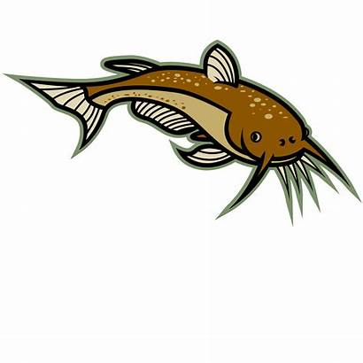 Catfish Clip Cartoon Ikan Lele Kartun Gambar