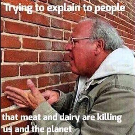 Funny Vegan Memes - 119 best vegan humor images on pinterest vegan humor vegan quotes and animal rights
