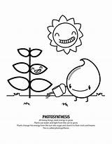 Coloring Pages Photosynthesis Energy Solar Record Drawing Brooklyn Bridge Sheets System Need Printable Pdf Getcolorings Getdrawings Books Dog Colorings sketch template