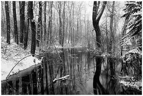 Black Winter 13 Hd Wallpaper Hdblackwallpapercom
