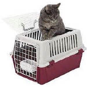 cat carrier driving miss kitty your cat s veterinary visits