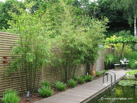 Garten Sichtschutz by Sichtschutz Garten Pflanzen Suche Landscaping